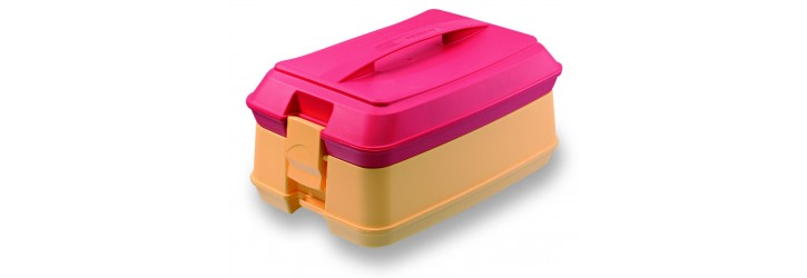 Individual insulated meal containers